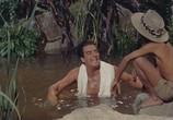 Фильм Сафари / Safari (1956) - cцена 7