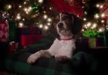 Сцена из фильма В канун Рождества / One Christmas Eve (2014) В канун Рождества сцена 16