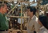 Фильм Тарзан едет в Индию / Tarzan Goes To India (1962) - cцена 5