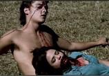 Фильм Все парни любят Мэнди Лейн / All the Boys Love Mandy Lane (2006) - cцена 1