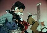 Мультфильм Как кошка с собакой... - Сборник мультфильмов (1972-1984) (1972) - cцена 4