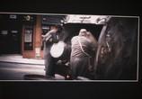 ТВ Ограды: Дополнительные материалы / Fences: Bonuces (2016) - cцена 4