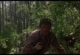 Фильм Болотная тварь / Swamp Thing (1982) - cцена 4