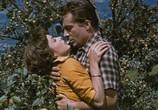 Фильм Три монеты в фонтане / Three Coins In The Fountain (1954) - cцена 4