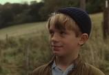 Сцена из фильма Дэнни - чемпион мира / Roald Dahl's Danny the Champion of the World (1989) Дэнни - чемпион мира сцена 7
