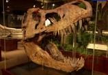 Сцена из фильма Правда и вымысел. Парк Юрского периода / Truth and fiction. Jurassic Park (2013) Правда и вымысел. Парк Юрского периода сцена 3