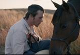 Фильм Наездник / The Rider (2018) - cцена 1