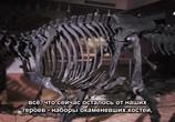 ТВ Сказание о динозаврах / Dinotasia (2012) - cцена 2