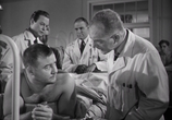 Фильм Мужчины / The Men (1950) - cцена 3