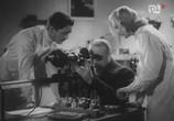 Фильм Белый негр / Biały Murzyn (1939) - cцена 6