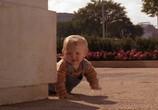 Фильм Младенец на прогулке, или ползком от гангстеров / Baby's Day Out (1994) - cцена 3