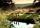 Фильм Мальчишник по-ирландски / The Stag (2013) - cцена 4
