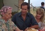 Сцена из фильма Каникулы / National Lampoon's Vacation (1983) Каникулы сцена 2