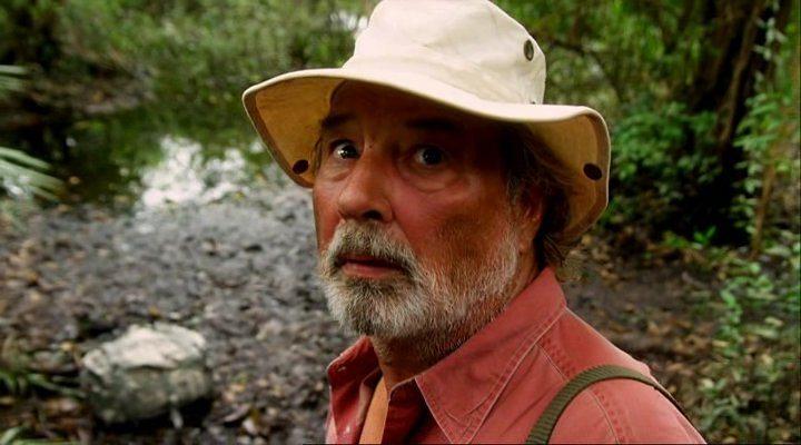 Драконовые осы (2012) смотреть онлайн или скачать фильм