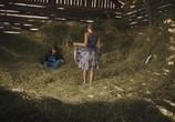 Сцена из фильма Это особенное лето / Kid Svensk (2007) Это особенное лето сцена 1