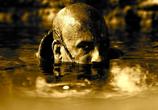 Фильм Риддик / Riddick (2013) - cцена 7