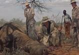 Фильм Сафари / Safari (1956) - cцена 2