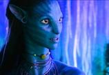 Фильм Аватар / Avatar (2009) - cцена 3