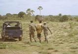 Фильм Самба Траоре / Samba Traoré (1992) - cцена 3