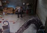 Фильм Мгла / The Mist (2007) - cцена 2