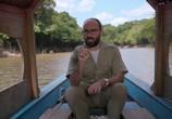 ТВ Поле Разума / Mind Field (2017) - cцена 1