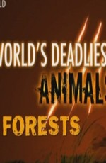 National Geographic: Самые опасные животные: Леса