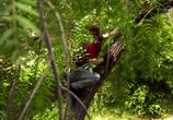 ТВ Discovery: Аляска: семья из леса / Alaskan Bush People (2014) - cцена 6