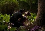 Фильм Кожа, в которой я живу / La piel que habito (2011) - cцена 3