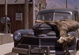 Сцена из фильма Плохой день в Блэк Рок / Bad Day At Black Rock (1955) Плохой день в Блэк Рок сцена 4
