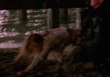 Фильм Улицы / Streets (1990) - cцена 7