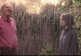 Фильм Фантастическая любовь и где ее найти / This Beautiful Fantastic (2017) - cцена 1