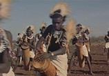 Фильм Сафари / Safari (1956) - cцена 8
