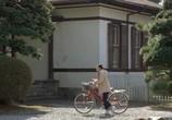 Фильм Любимое уравнение профессора / Hakase no aishita sûshiki (2006) - cцена 4