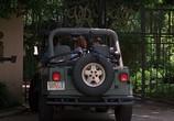 Сцена из фильма Дикость / Wild Things (1998) Дикость сцена 8