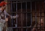 Сцена из фильма Плохой день в Блэк Рок / Bad Day At Black Rock (1955) Плохой день в Блэк Рок сцена 6