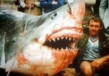 ТВ Discovery Channel: Animal Planet: Речные монстры / River monsters (2009) - cцена 2