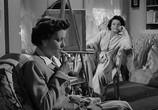 Фильм Момент безрассудства / The Reckless Momenty (1949) - cцена 3