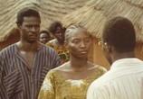 Сцена из фильма Самба Траоре / Samba Traoré (1992) Самба Траоре сцена 9