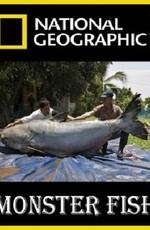 National Geographic: Охотник на пресноводных гигантов