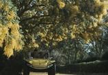 Сцена из фильма Кровавый залив / Reazione a catena (1971) Кровавый залив сцена 5