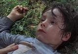 Фильм Гнездо шершней / Hornets' Nest (1970) - cцена 3