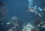 Фильм Под водой! / Underwater! (1955) - cцена 3