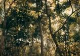 Сцена из фильма Экспедиция Мунго / Expedition Mungo (2017) Экспедиция Мунго сцена 5