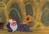 Сцена из фильма Сборник мультфильмов Владимира Попова / Полная коллекция (1960) Сборник мультфильмов Владимира Попова сцена 2