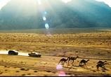 Сцена из фильма Трансформеры: Месть падших / Transformers: Revenge of the Fallen (2009) Трансформеры: Месть падших сцена 28