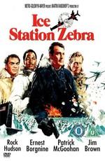 Полярная станция «Зебра»