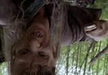 Сцена из фильма Поворот не туда 2: Тупик / Wrong Turn 2: Dead End (2007) Поворот не туда 2: Тупик сцена 2