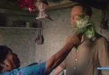 Сцена из фильма Таинственные миры / Secret Worlds (2009) Таинственные миры сцена 2