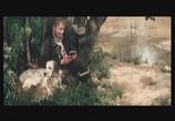 Фильм Белый Бим Черное ухо (1976) - cцена 2
