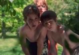 Сцена из фильма Берегись, большой брат! / Big Brother Trouble (2000) Берегись, большой брат! сцена 2